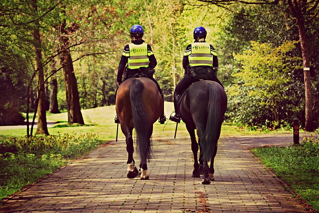 jízdní policie.jpg