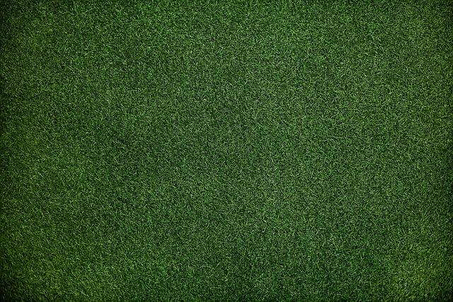Zelený trávnik.jpg