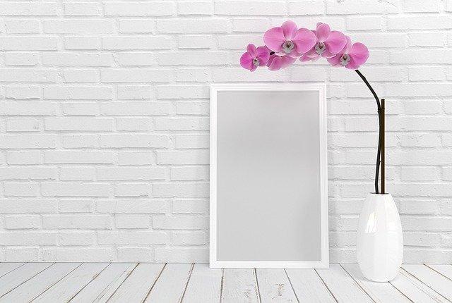 Fialová orchidea v bielom črepníku.jpg